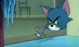 Мышиные проделки
